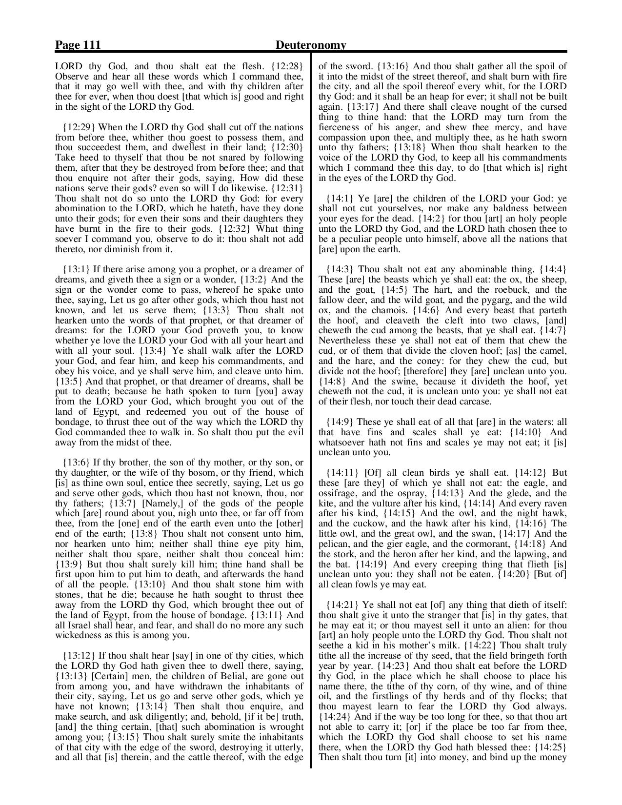 King-James-Bible-KJV-Bible-PDF-page-132